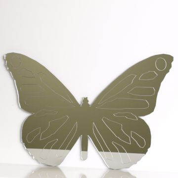 Butterfly Mirror (etched)