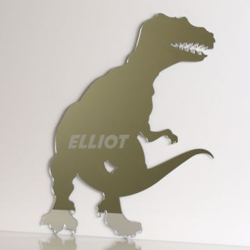 Personalised Tyrannosaurus Rex Dinosaur Mirror