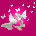 Butterfly Set of Mirrors